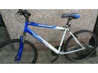 Appolo men's mountain bike