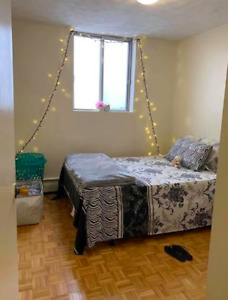 1 Room Available in 2 Bedroom Apartment