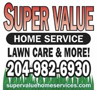 Save Yourself Some Time and Have Us Take Care of Your Lawn Care