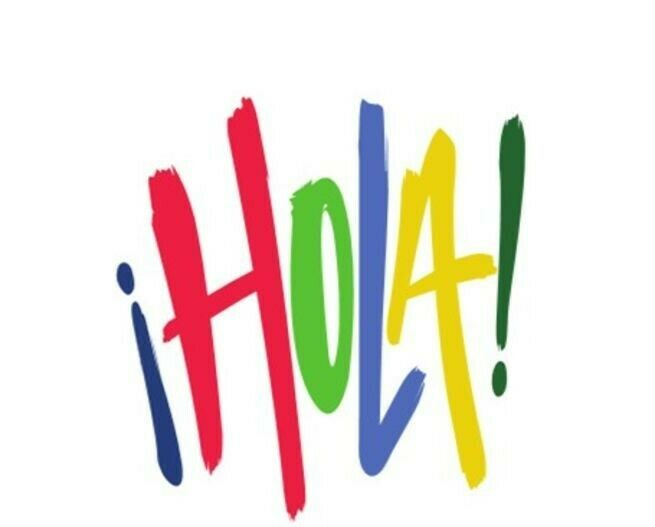 Learn Spanish! Free trial class online with a native and qualified teacher / 1 to 1 classes €12.00