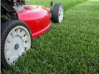 Garden maintenance/Grass cutting / hedges cut/ pressure washing