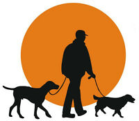 Experienced Dog Walker  |   FREE service!