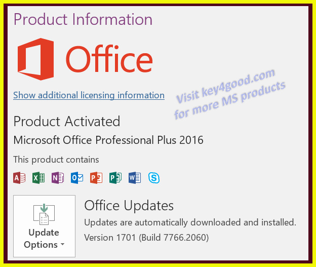 MS Office 2016 Pro Plus for 1 PC device life time