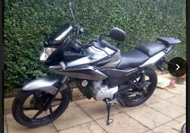 Honda 2009 CBF125 Excellent Ready to Ride