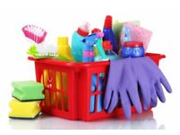 Experienced domestic cleaner available