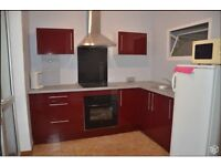 1 Bedroom flat in Agde (south france), holliday