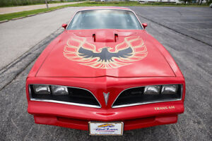 Looking to buy 1977-1978 RED Trans Am