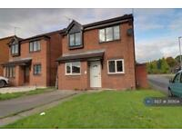 4 bedroom house in Helen Sharman Drive, Stafford, ST16 (4 bed)