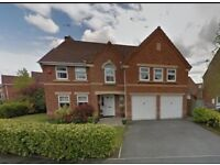 5 Bedroom house for rent WA5