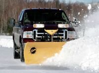 SNOW PLOWING DRIVER and LANDSCAPING JOBS - $ 1,000  / week.