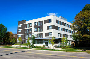 392 Albert St Limited Availibility Left For September 2017 Kitchener / Waterloo Kitchener Area image 1