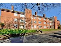 3 bedroom flat in Selsfield Drive, Brighton, East Sussex, BN2