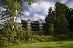 Luxury Furnished All-Inclusive Condo (Water Views) - Deerhurst