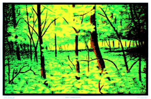 Summer Woods Flocked Blacklight Poster Art Print Blacklight