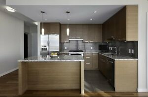 Lux spacious apt @ Metrotown