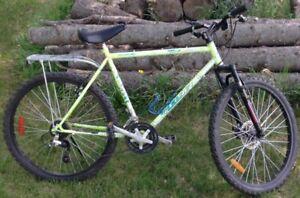 Custom leader mountain bike