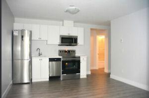 Cozy one bedroom + office basement suite - Trendy Fraser 'Hood
