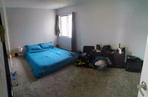 Master Room For Rent Vic West