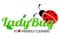 Health & Eco-Friendly Cleaning Service