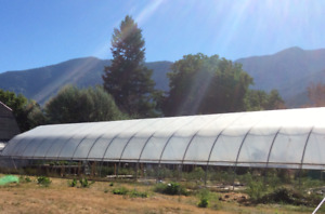 WANTED: Commercial Greenhouse, used