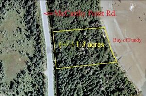 MCCARTHY POINT RD. (Lot 15-07), POCOLOGAN - NEW PRICE