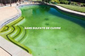 SULFATE DE CUIVRE SEL BLEU pour PISCINE  SPA FONTAINE D'EAU