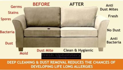 Best & Cheapest Carpet, Rug & Upholstery Cleaners
