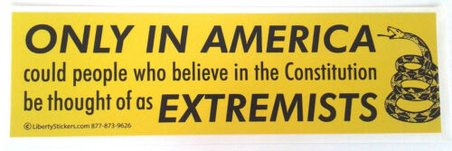ONLY IN AMERICA COULD PEOPLE WHO BELIEVE Bumper Sticker L