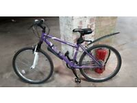 """Apollo Twilight Pink 17"""" Great condition Lady bike for sale"""