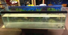 4ft bare tank for sale