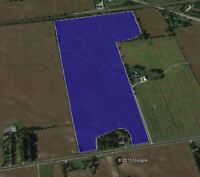 Are you looking for a FARM close to the City???