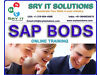SAP BODS ONLINE TRAINING | BODS PROJECT SUPPORT | BODS CERIFICATION TRAINING Shotton Colliery, Durham