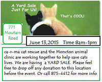 yard sale items donated to ca-r-ma Moncton