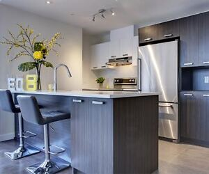 Semi-furnished 1 bedr. condos for rent in new luxury building !