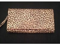 Dolcis clutch bag