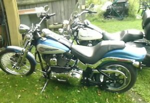 road king custom and softtail springer for sale