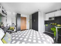 Premium Studio Dual Occupancy (Austen House)