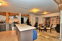 Old Montreal, industrial looking condo 1 bed, dogs welcome!
