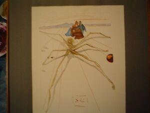 Litografia-quadro-di-Salvador-Dali-034-Aracne-034-serie-Divina-Commedia-lithography
