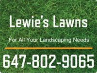 LAWN MAINTENANCE AND SPRING CLEAN UP/SPRING JUNK REMOVAL