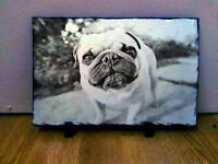 Pug Pup Puppies Custom Sketch Art on Traditional Slate