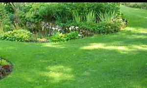 Affordable Lawn, Garden & Home Maintenance Southport Gold Coast City Preview