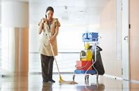 Immaculate Affordable Cleaning Services