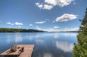 Balsam Lake Waterfront - 15 Star Road Kawartha Lakes Peterborough Area image 4
