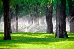 In-Ground Sprinkler Systems starting at $499 for Front or Back Kitchener / Waterloo Kitchener Area image 1