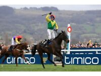 Cheltenham Tickets x3, Thursday, Club Enclosure