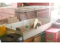 Indoor guinea pig/ rabbit cage