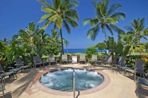1 Bedroom Condo on Big Island