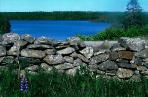lot for Sale - Lake View
