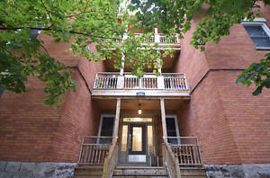 3 Bedroom Apartment in Centretown